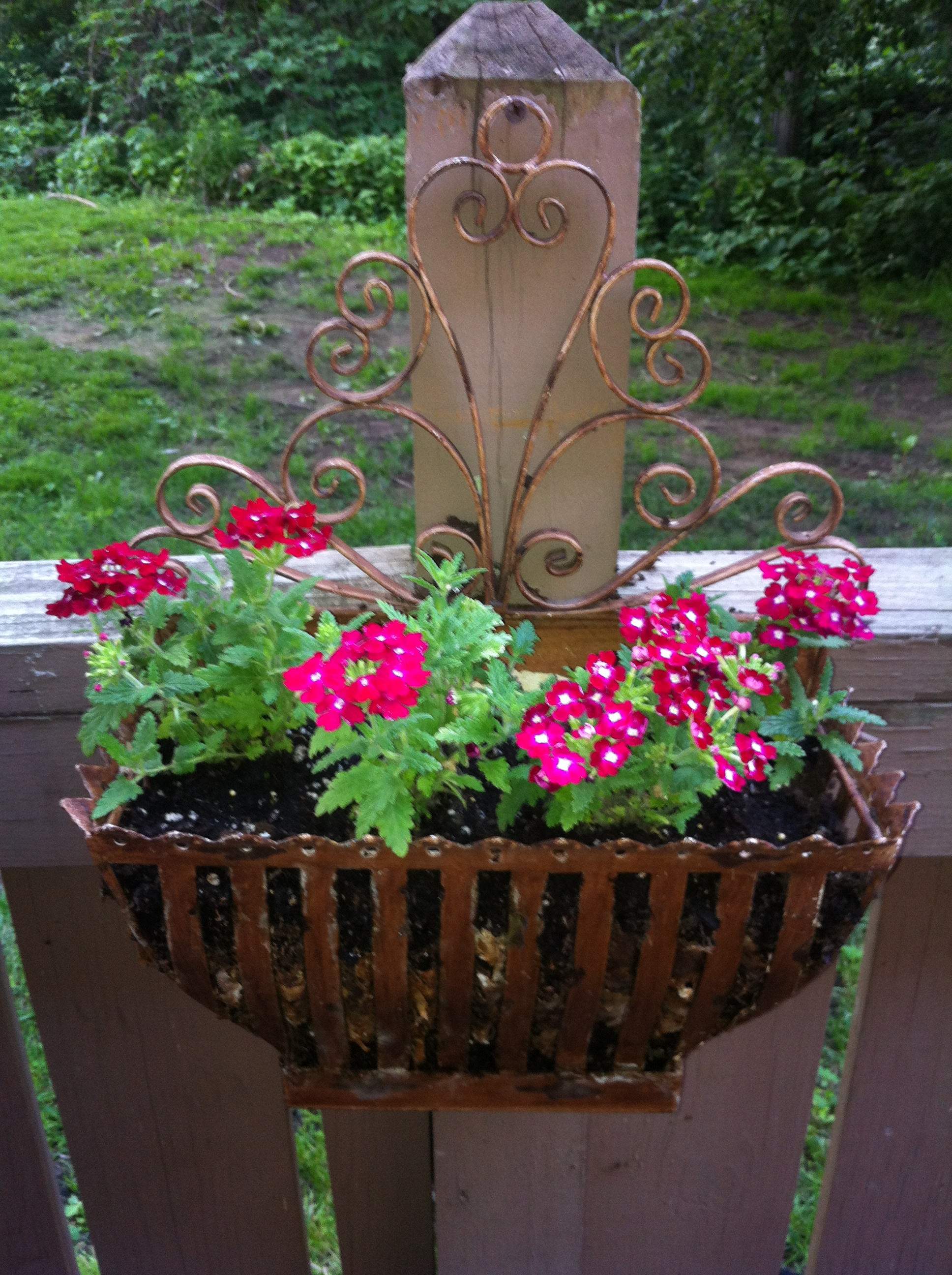 Container Gardening How Does The Garden Grow